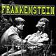 Frankenstein : 200 años de vida artificial