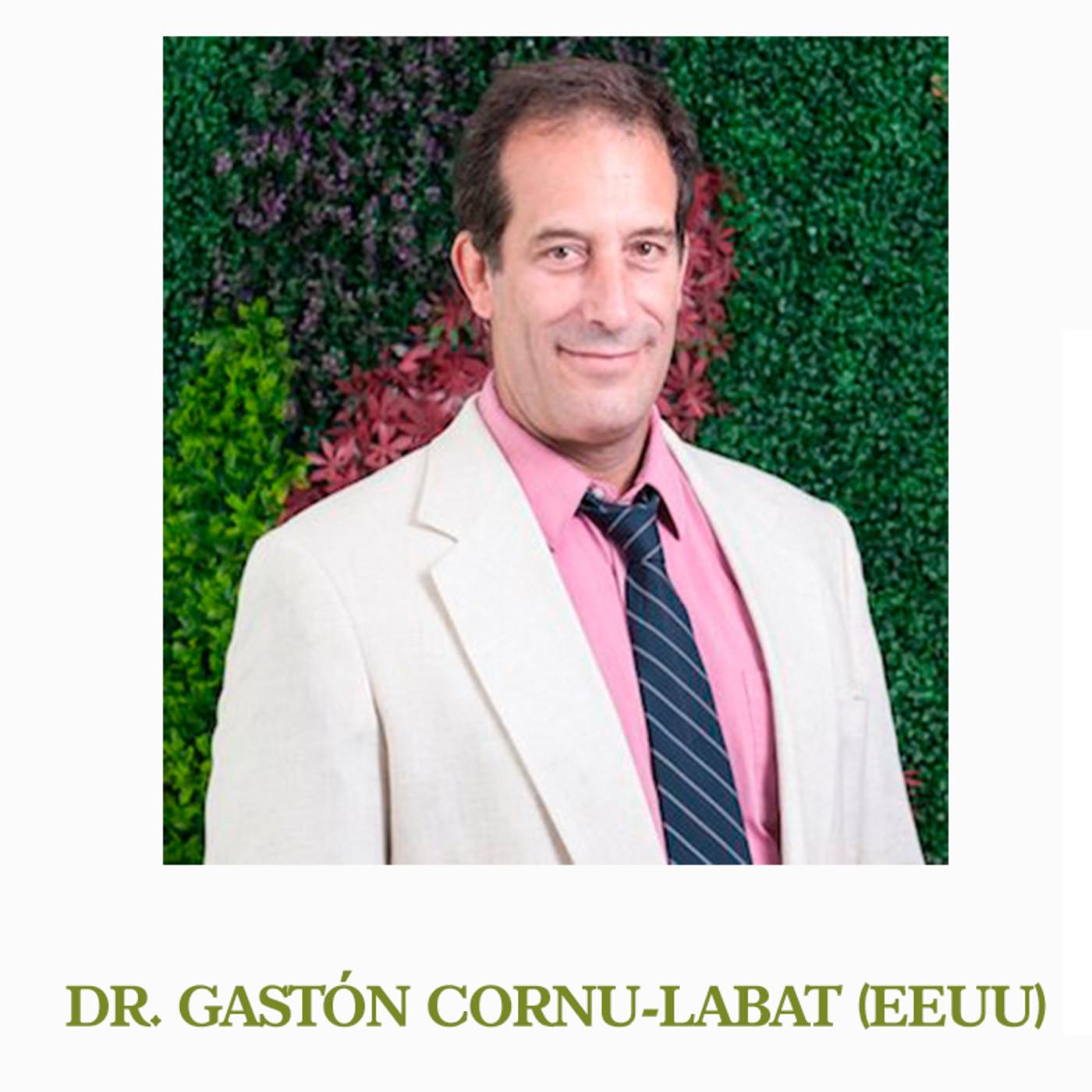 Gaston Cornu