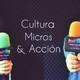 Cultura, micros y acción - programa 135
