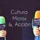 Cultura, micros y acción - programa 133