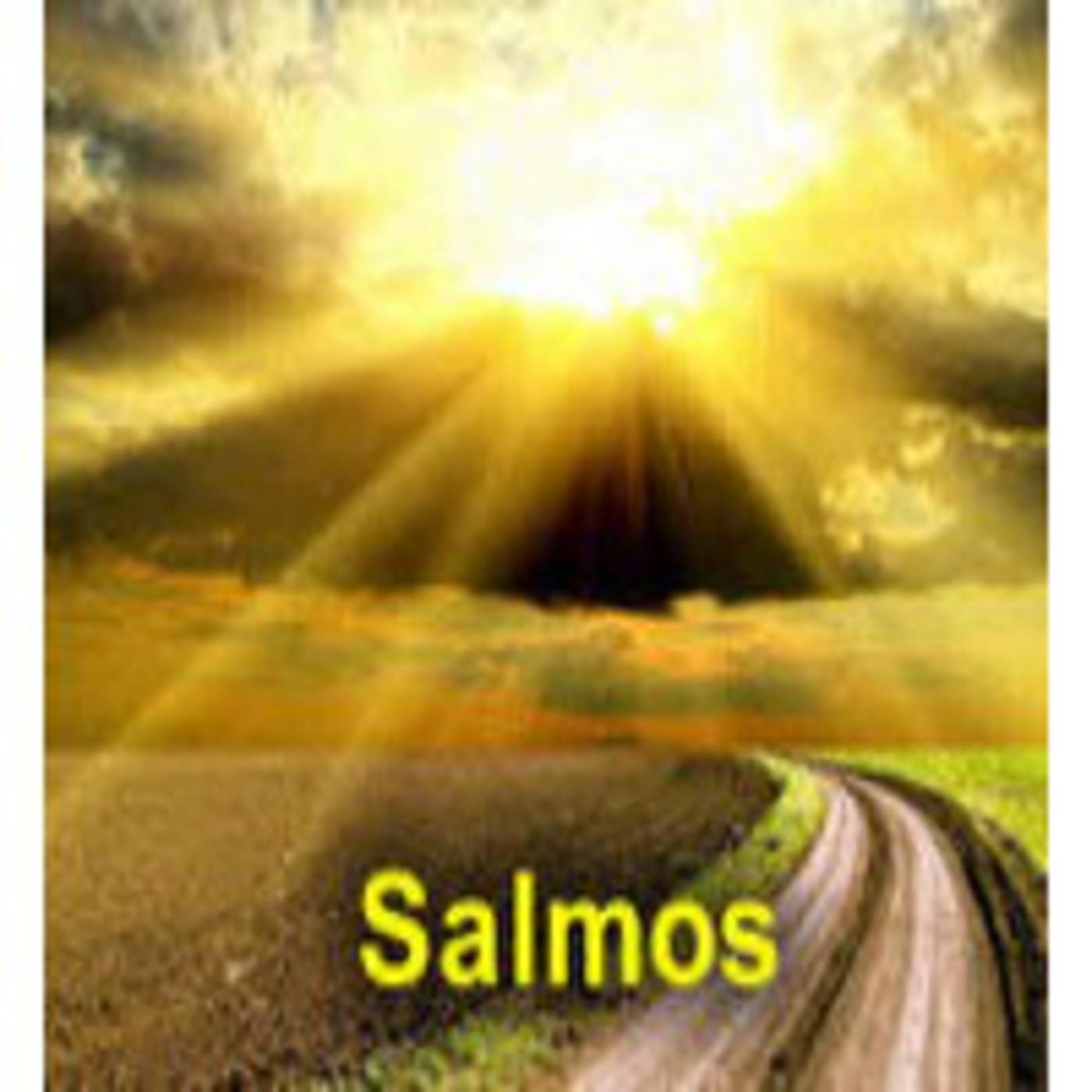Salmos Biblia En Audio En Antigüo Testamento En Mp32203 A Las 14