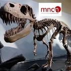 Un paseo por el Museo Nacional de Ciencias Naturales de Madrid (92)