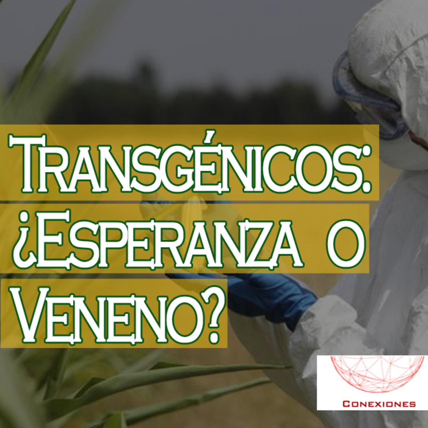 Conexiones: Transgénicos ¿Esperanza o Veneno? en Podcast El AJo en ...