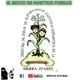 YOJOVI Podcast EL BEJUCO DE NUESTROS PUEBLOS