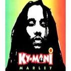 Ky-Mani Marley at Garance Reggae Festival concert live
