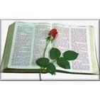 Dia 8-10-2013 Jeremias Cap 1;2 y Filipenses 3
