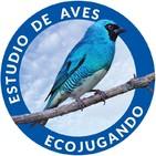 Estudio de Aves Ecojugando