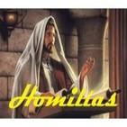 Homilías