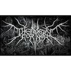 The Metal Coner 11-12-2012-. Entrevista a 'hyvan Draco' y 'Destino Entierro'