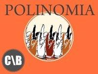 Polinomia 06-12-2012 Casta goleadora