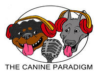 Episode 29: Chilling with Chad Mackin - The Canine Paradigm