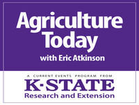 Summer Annual Forage Options — Agriculture Today —May 23, 2018