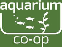 How to Aquascape an Aquarium 2018