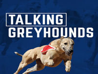 Talking Greyhounds October 14 Edition - with Simone Fisher