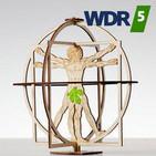 Verspätung bei der DB - Harlekin Marienkäfer - Hitmusik - Holz