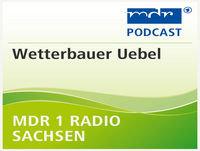 wetterbauer