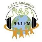 Radio Maratón 8 de Marzo, Día de la Mujer