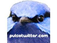 <![CDATA[PULSOTWITTER.COM]]>