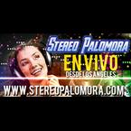 Stereo Palomora
