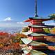 Viajes, música y otros vicios 2x10 - 12 días en Japón