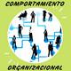 Introduccion al Comportamiento Organizacional