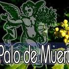 El Ángel de tu Salud - PALO DE MUERTO II