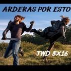 """Arderas Por Esto TWD 8X16 """" IRA"""""""