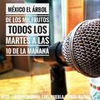 México el árbol de los mil frutos: No soy Heterosexual Parte 1