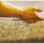Reflexión Evangelio según San Lucas 8,4-15.