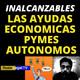 Ayudas para Autonomos y Pymes 2020 | Ayudas economicas del gobierno de Pedro Sanchez | Prestamos ICO