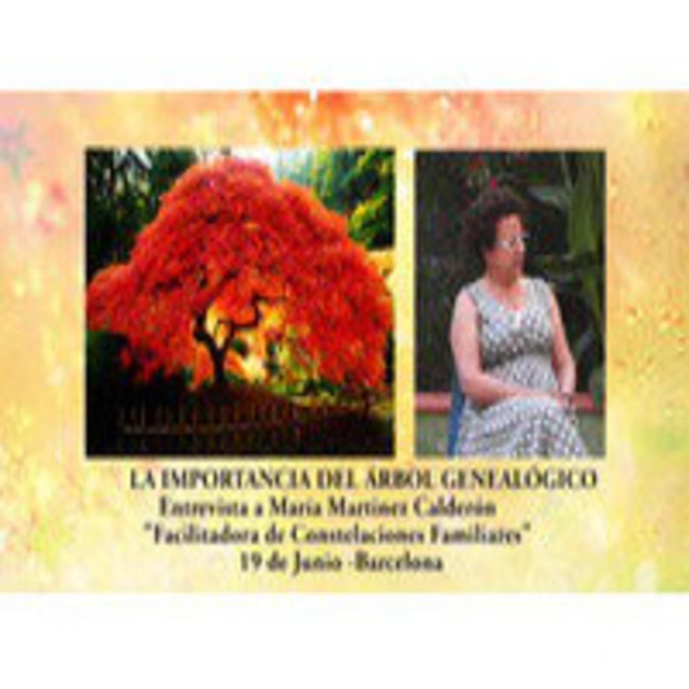 Las Constelaciones según la Biodescodificación - La importancia árbol genealógico Mº Martínez Calderón