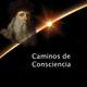 Caminos de Consciencia - Cuadernos de notas - Leonardo da Vinci