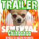 Trailer Semental Chihuahua
