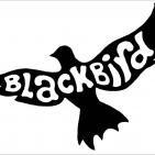 Historias de un jueves 6: Blackbird