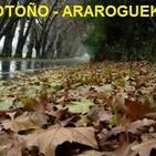 AraroguekÚi - otoÑo