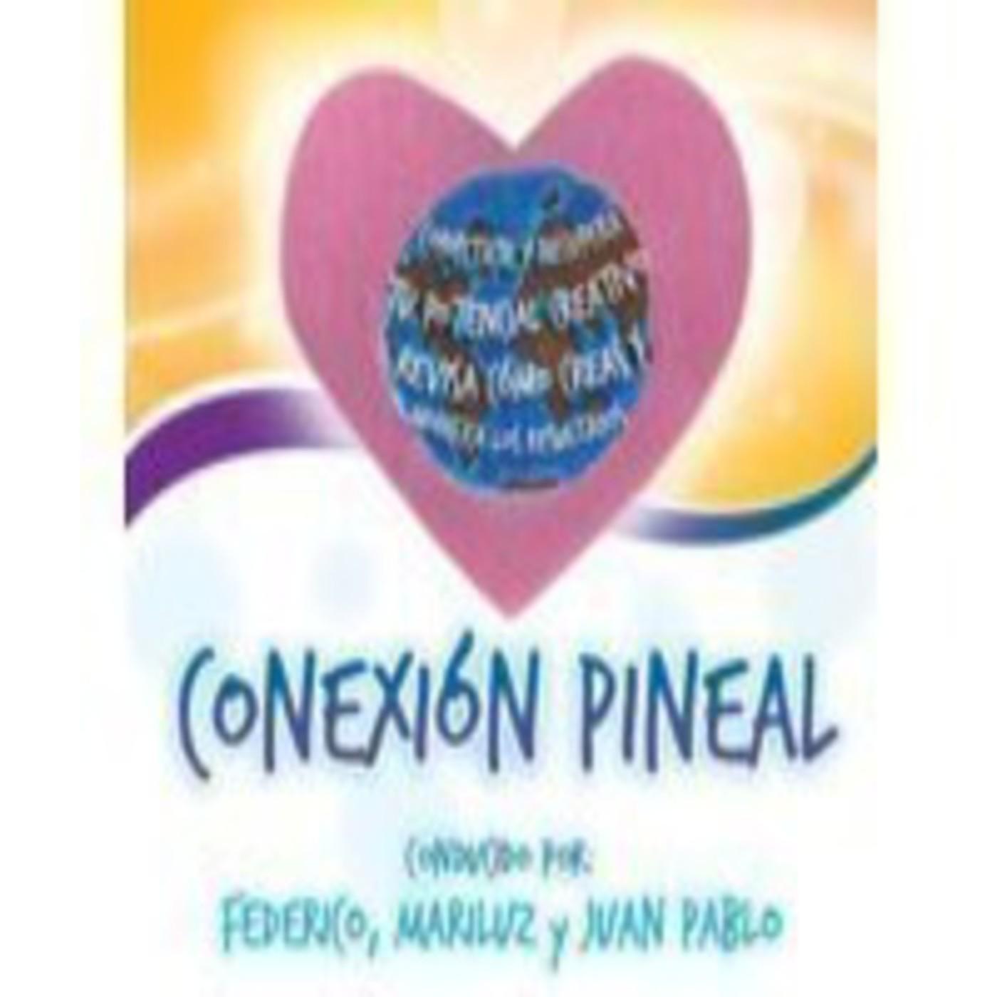 Programa Conexion Pineal 18 de Junio 2014