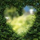 NOSOTRAS EN LA ONDA: Amor