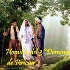 Homilía del 3º Domingo de Pascua