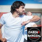 CAMINO MARCIAL nº 120 - Jerónimo Cuadrelli (Kung Fu)