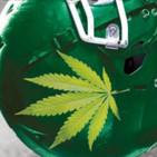 Cannabis y Rendimiento Deportivo - Álvaro Guzmán