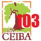 "PODCAST 103 LA CEIBA ""Hidrocefalia Normotensa"""