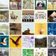LOS 50 ESENCIALES DE 2016 PARA HOTEL ARIZONA (2ª parte)