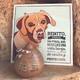 Maltrato animal: Sentencia condenatoria por el 'Caso Benito'