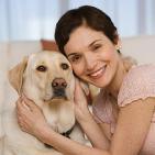 Como Preparar a tu Perro para recibir al Nuevo Bebe