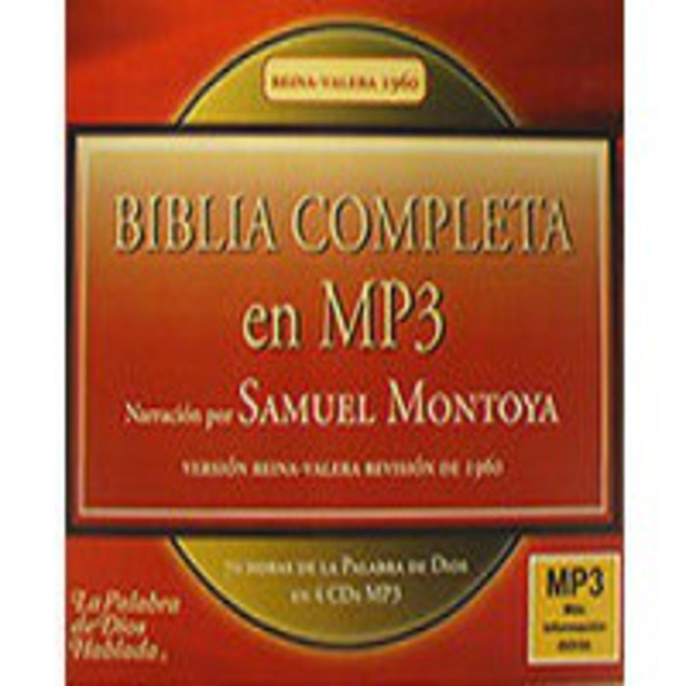 [112/156]BIBLIA en MP3 - Nuevo Testamento - Mateo