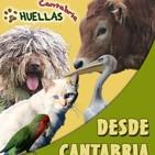 Huellas cantabria 7 - 12 de noviembre