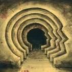 SN #46: ¿Cómo funciona la mente?