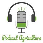 002 El etiquetado láser de productos agrícolas