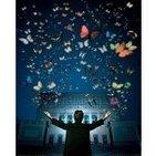 Colección de mariposas (Música desde Ítaca)