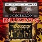 THE BUZZOS live